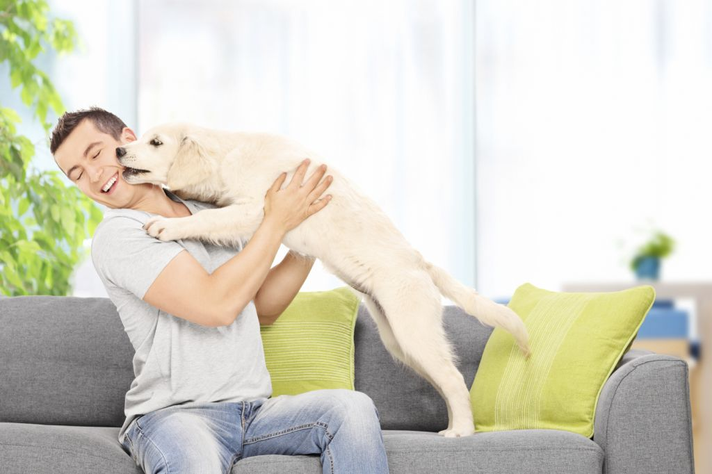 Man playing with a puppy seated on couch at home